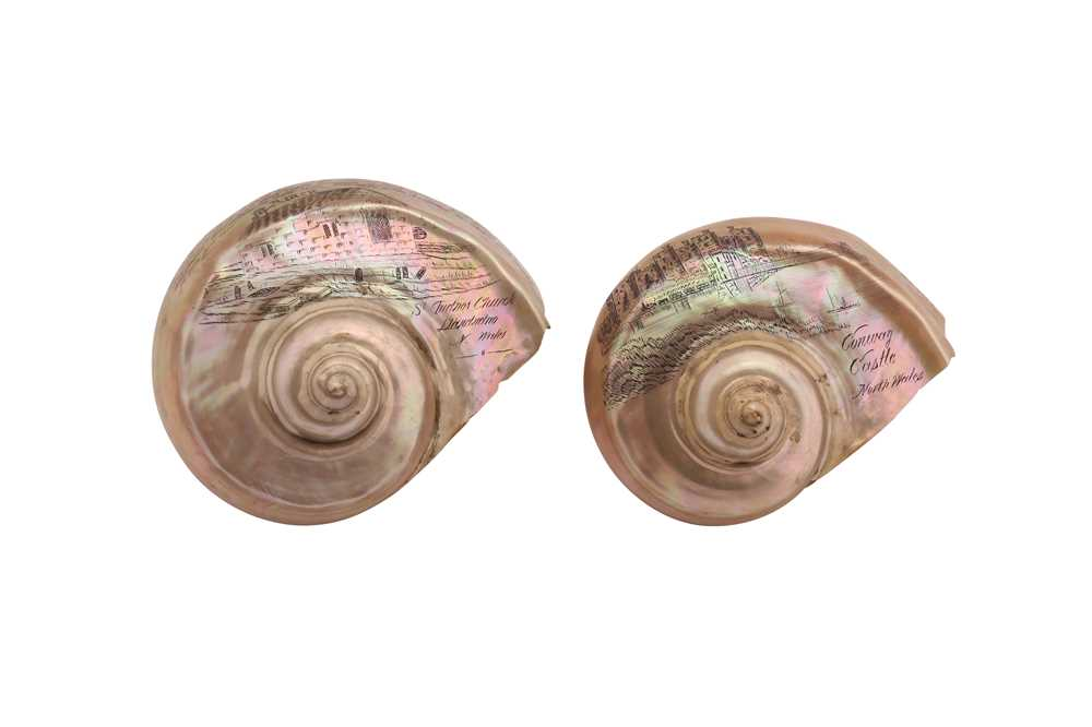 TWO 19TH CENTURY GREAT GREEN TURBAN SHELLS CARVED WITH SCENES OF WALES (TURBO MARMORATUS)