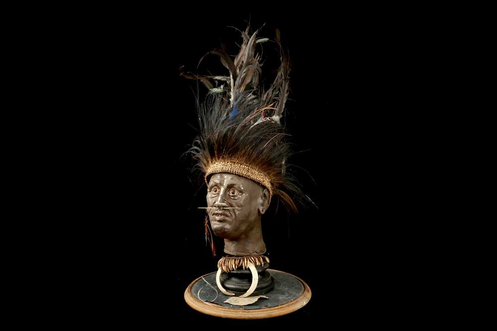 A MODEL OF A TRIBAL ELDERS' HEAD A NEW GUINEA TRIBAL HEAD UNDER A LARGE 19TH CENTURY GLASS DOME - Image 12 of 13
