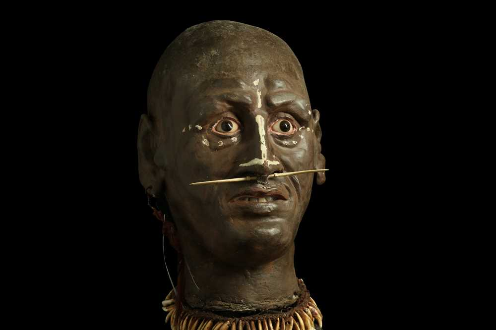 A MODEL OF A TRIBAL ELDERS' HEAD A NEW GUINEA TRIBAL HEAD UNDER A LARGE 19TH CENTURY GLASS DOME - Image 5 of 13