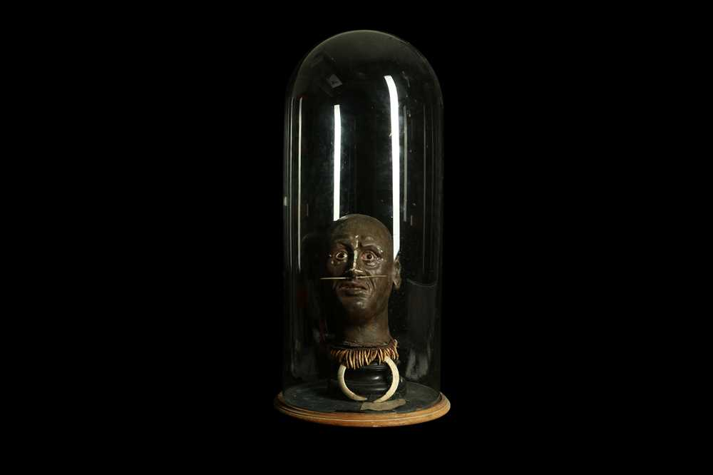 A MODEL OF A TRIBAL ELDERS' HEAD A NEW GUINEA TRIBAL HEAD UNDER A LARGE 19TH CENTURY GLASS DOME - Image 2 of 13