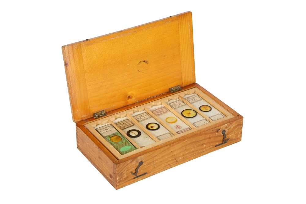 A COLLECTION OF 19TH AND 20TH CENTURY SPECIMEN MICROSCOPE SLIDES IN A PINE BOX - Image 2 of 5