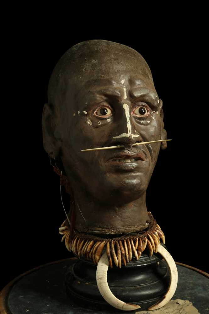 A MODEL OF A TRIBAL ELDERS' HEAD A NEW GUINEA TRIBAL HEAD UNDER A LARGE 19TH CENTURY GLASS DOME - Image 3 of 13