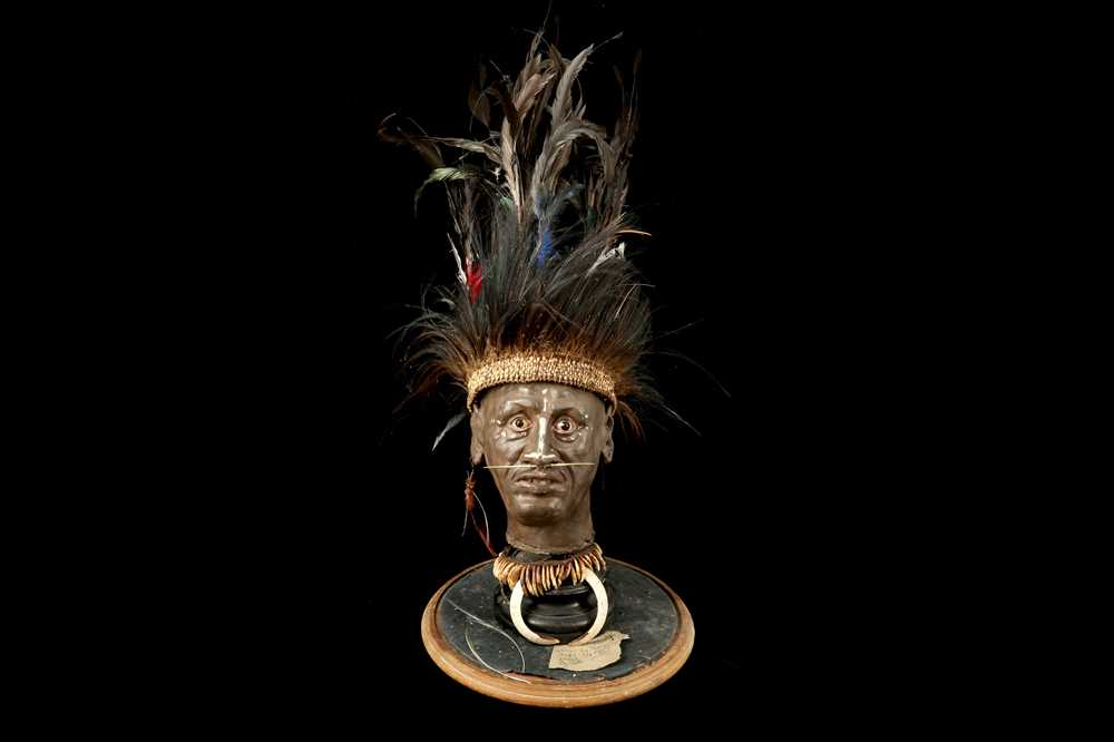 A MODEL OF A TRIBAL ELDERS' HEAD A NEW GUINEA TRIBAL HEAD UNDER A LARGE 19TH CENTURY GLASS DOME