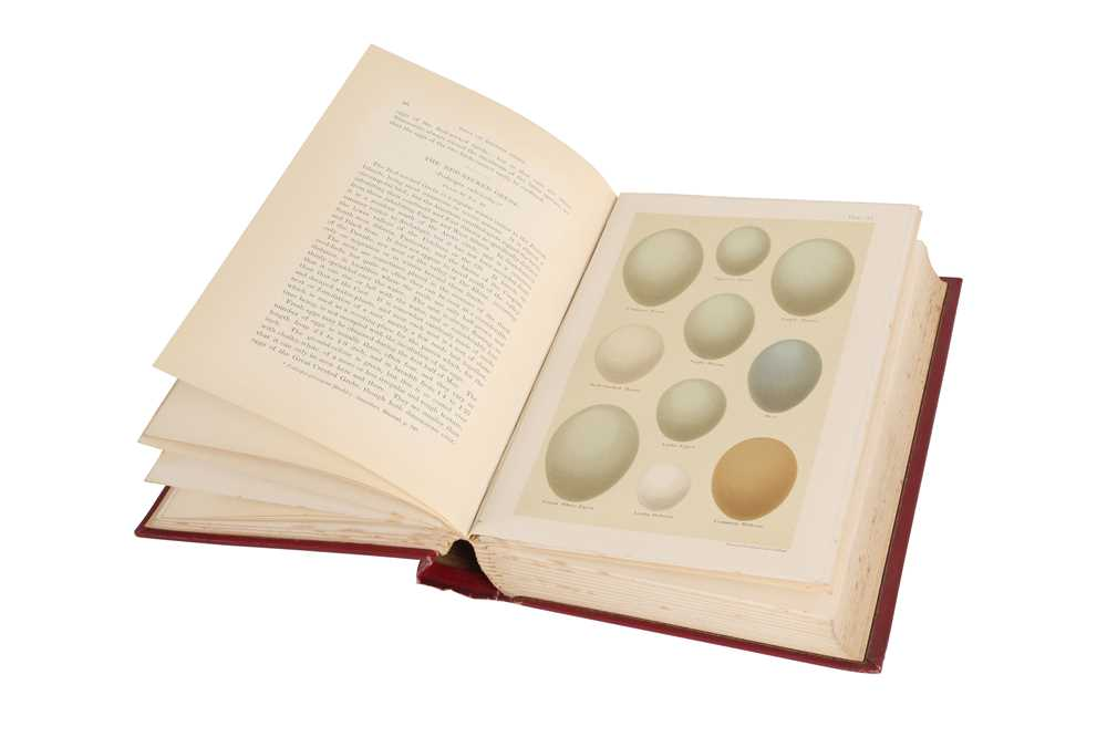 A LEATHER BOUND BOOK 'COLOURED FIGURES OF THE EGGS OF BRITISH BIRDS' BY HENRY SEEBOHM - Image 4 of 6