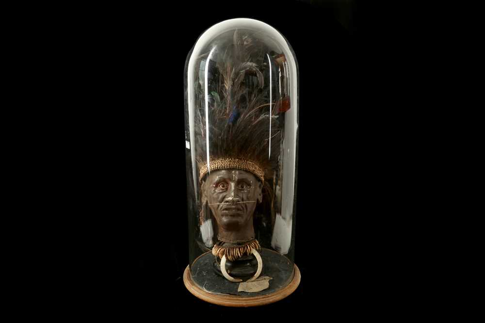 A MODEL OF A TRIBAL ELDERS' HEAD A NEW GUINEA TRIBAL HEAD UNDER A LARGE 19TH CENTURY GLASS DOME - Image 13 of 13