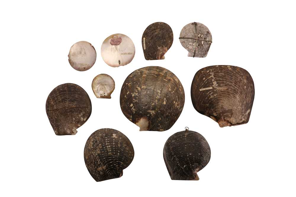 A COLLECTION OF TEN 19TH CENTURY FRENCH CARVED OYSTER SHELLS - Image 2 of 2