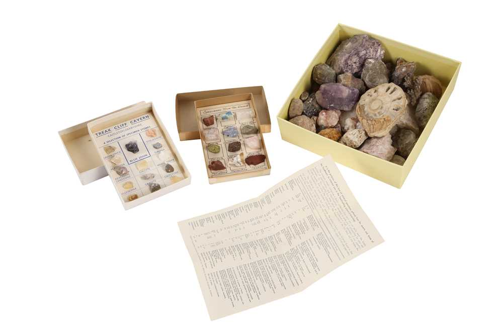 A COLLECTION OF MINERALS AND FOSSILS