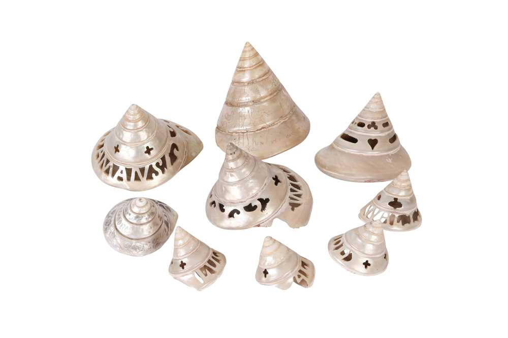A COLLECTION OF EIGHT LATE 19TH CENTURY CARVED SEASHELLS FROM THE ANDAMAN ISLANDS TOGETHER WITH ANOT