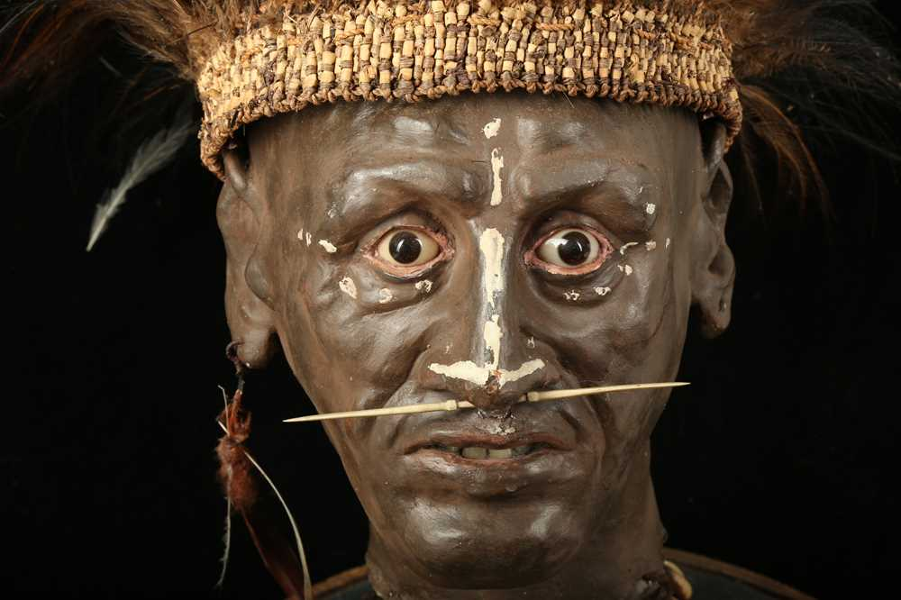 A MODEL OF A TRIBAL ELDERS' HEAD A NEW GUINEA TRIBAL HEAD UNDER A LARGE 19TH CENTURY GLASS DOME - Image 11 of 13