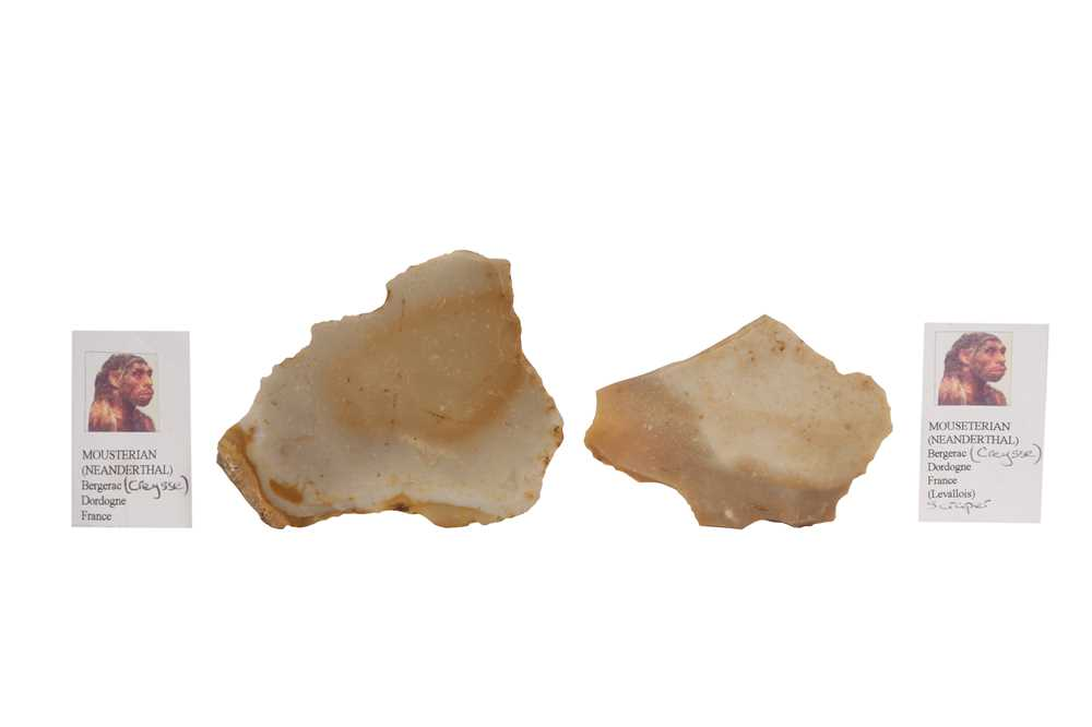 THREE NEANDERTHAL STONE TOOLS IN VICTORIAN MUSEUM BOXES - Image 4 of 5