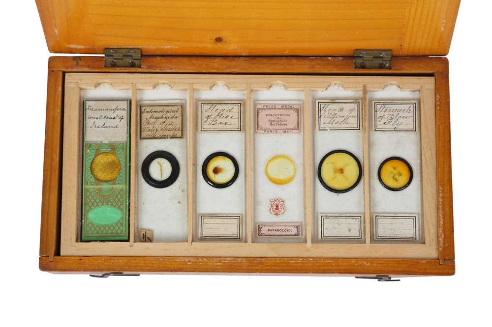 A COLLECTION OF 19TH AND 20TH CENTURY SPECIMEN MICROSCOPE SLIDES IN A PINE BOX - Image 5 of 5