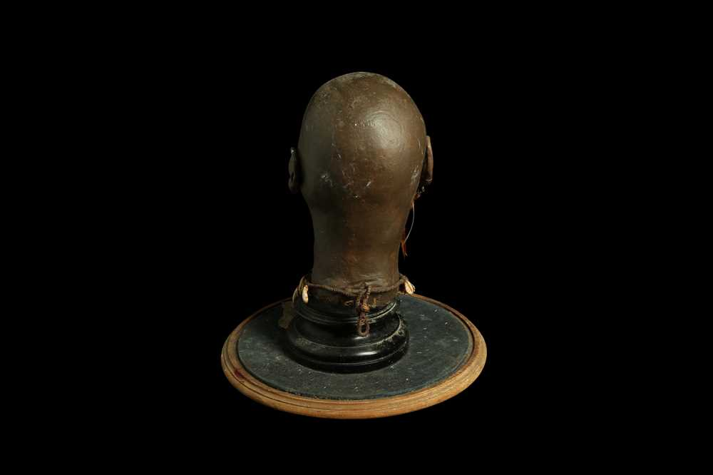 A MODEL OF A TRIBAL ELDERS' HEAD A NEW GUINEA TRIBAL HEAD UNDER A LARGE 19TH CENTURY GLASS DOME - Image 7 of 13