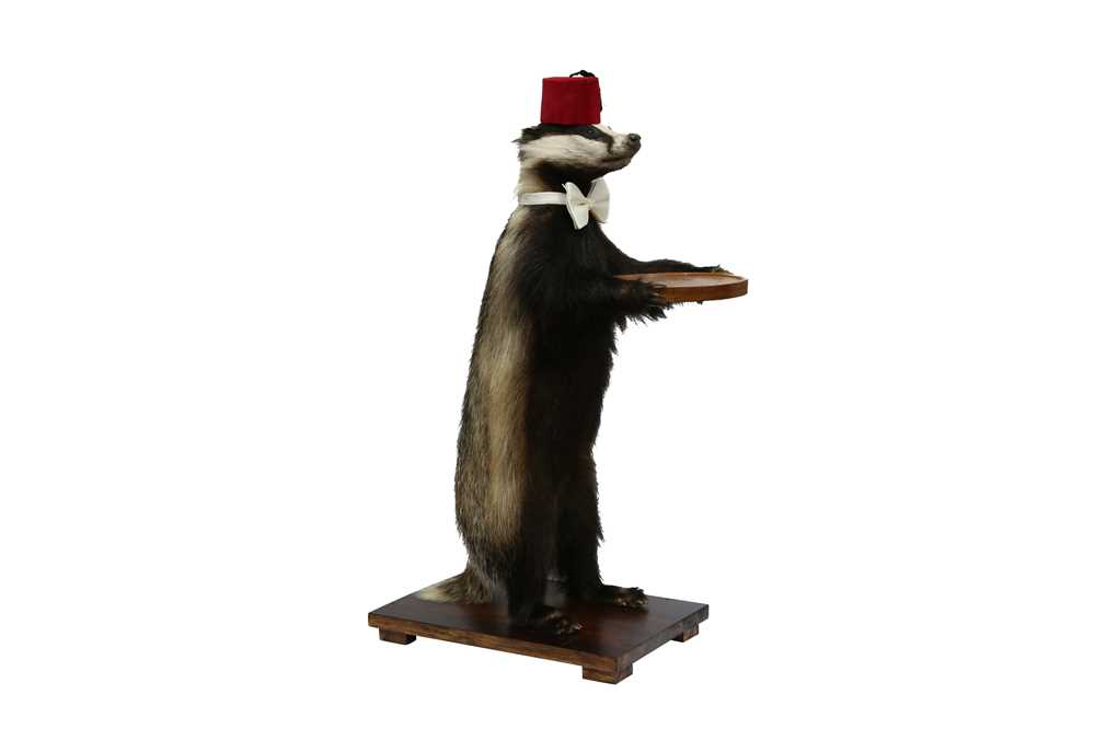 TAXIDERMY: A BADGER (MELES MELES) WAITER WEARING A FEZ AND A BOW TIE