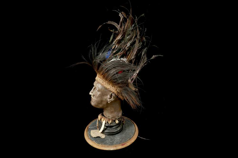 A MODEL OF A TRIBAL ELDERS' HEAD A NEW GUINEA TRIBAL HEAD UNDER A LARGE 19TH CENTURY GLASS DOME - Image 9 of 13