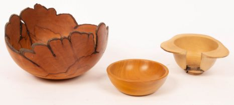 Dave Regester, a turned quince wood bowl with natural form edge,