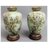 A pair of good quality 19thC. Oriental cloisonné enamelled vases with birds & trees on celadon groun