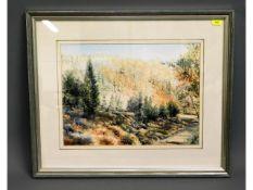 """A framed watercolour of """"Dappled Light at Gunnisla"""