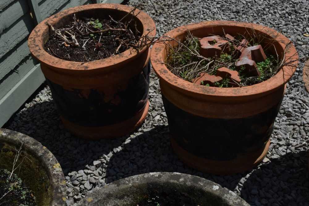 Set of three terracotta planters - Image 4 of 5