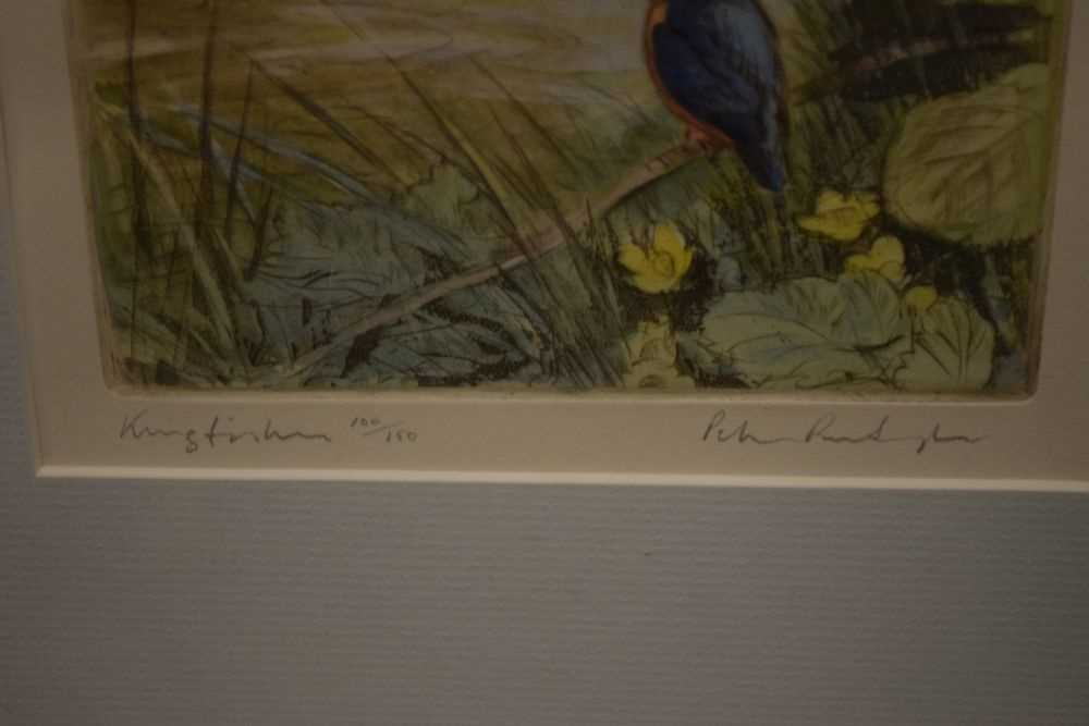 Peter Partington - watercolours - Black-tailed godwits, together with - Image 3 of 8