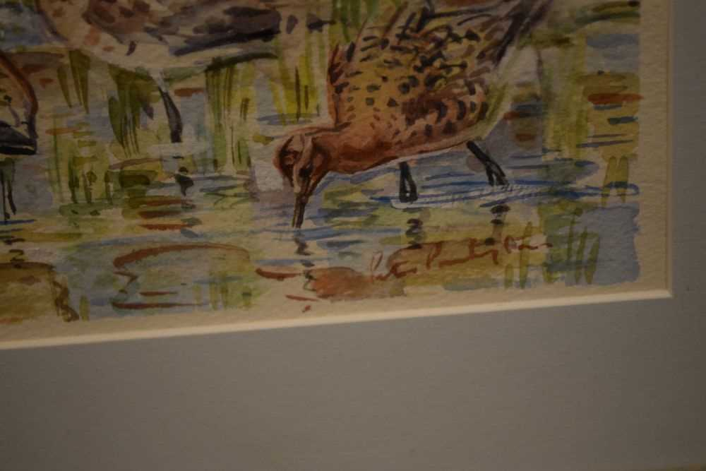 Peter Partington - watercolours - Black-tailed godwits, together with - Image 7 of 8