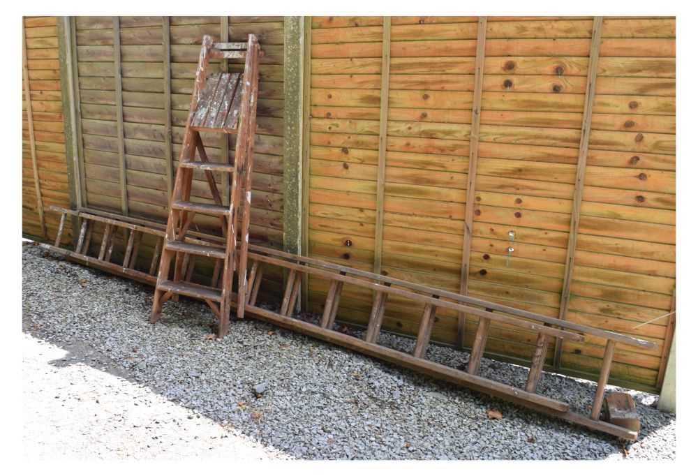 Step ladder and ladder