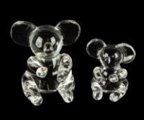 (2) Steuben Koala Bears