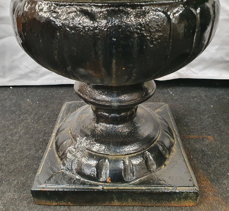 A pair of black painted cast iron Griechen style garden urns 59cm high 52cm diameter. - Image 2 of 6