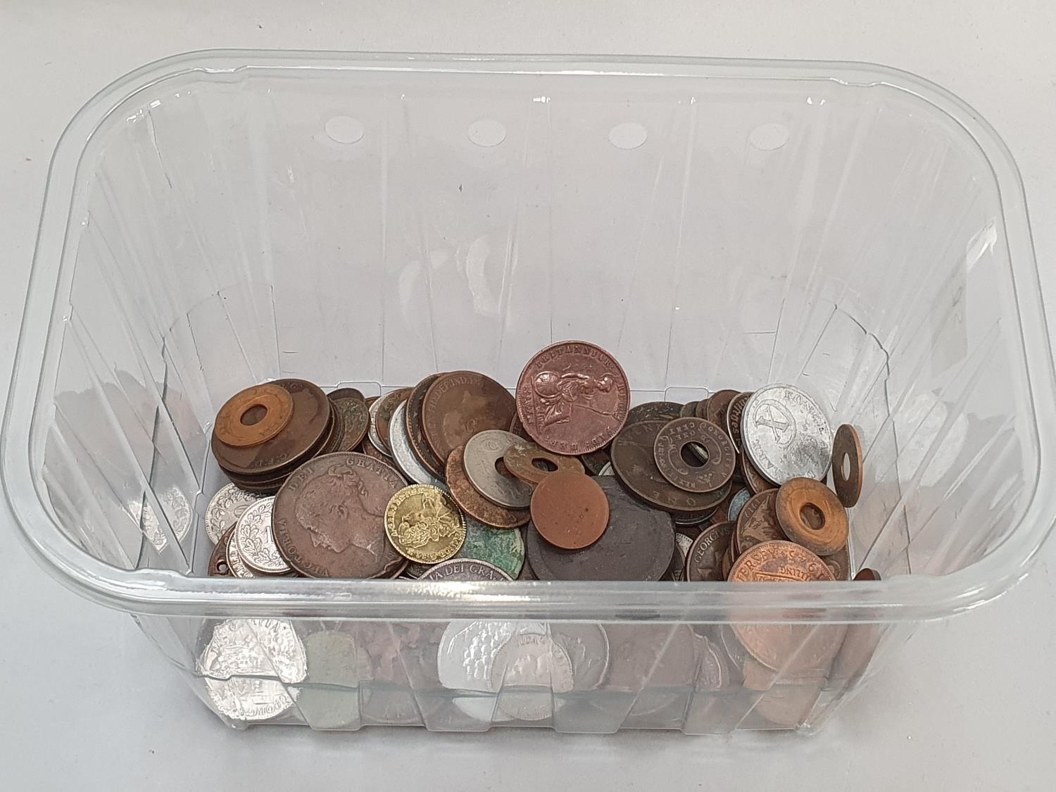Clear plastic tub of various coinage.