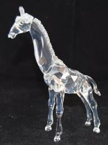 Swarovski Crystal Baby Giraffe from the African Wildlife collection code 236717 retired, boxed