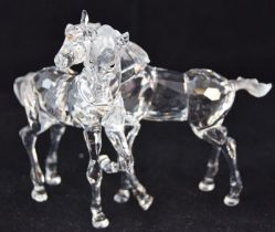 Swarovski Crystal Foals, code 627637 retired, boxed with paperwork.