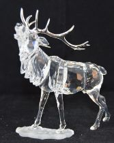 Swarovski Crystal large Stag from the rare encounters collection code 291431 retired, boxed with