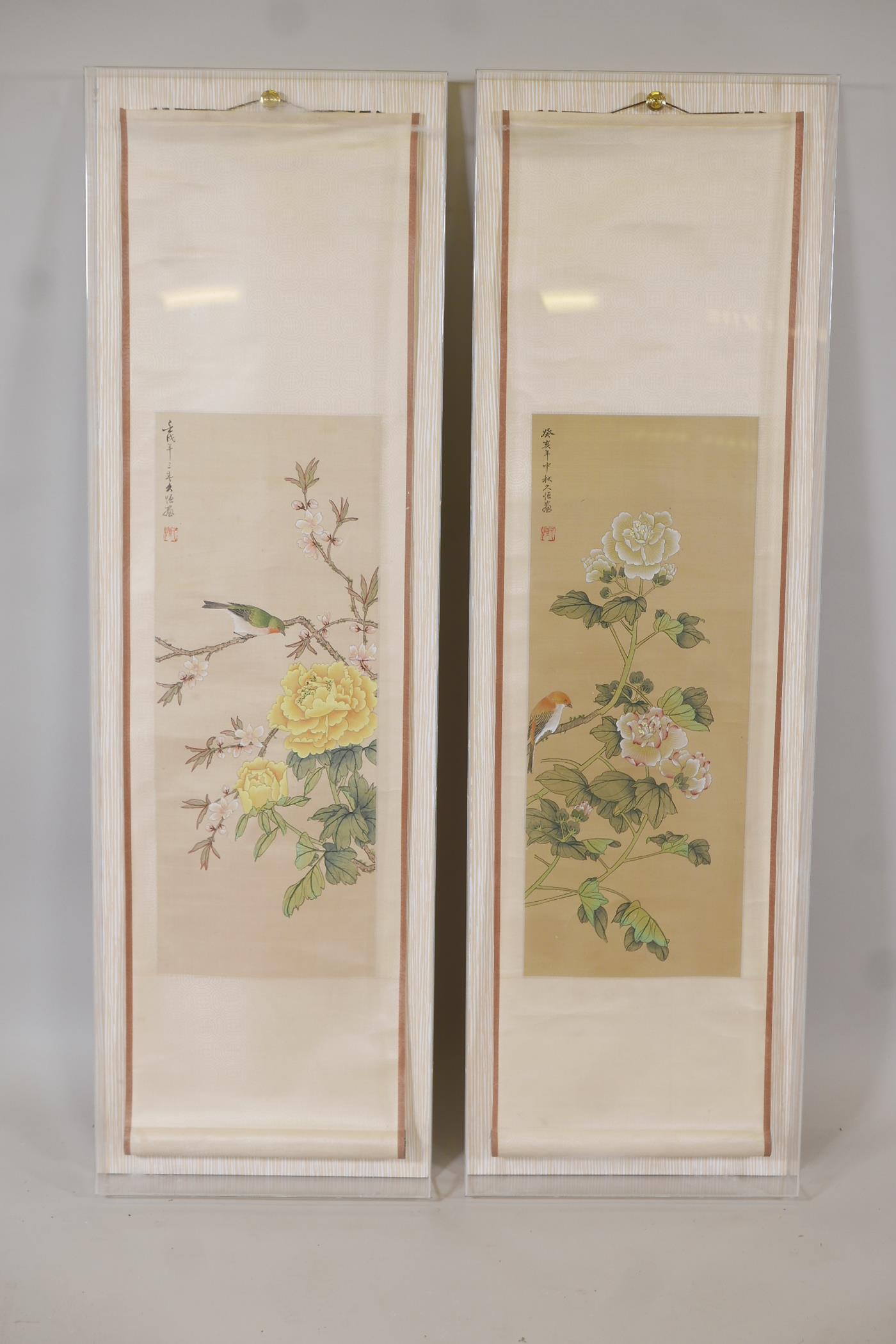 Two framed Chinese scrolls painted with birds and flowers, having inscriptions and red seal marks,