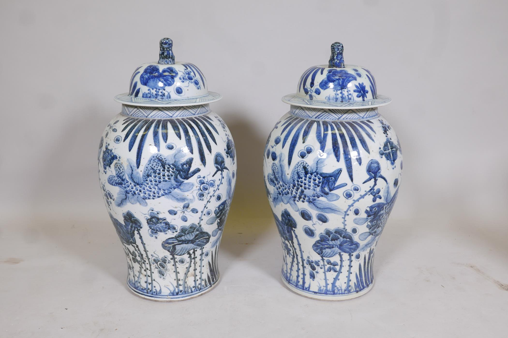 A pair of Chinese blue and white porcelain meiping jar and covers decorated with carp in a lotus - Image 2 of 5