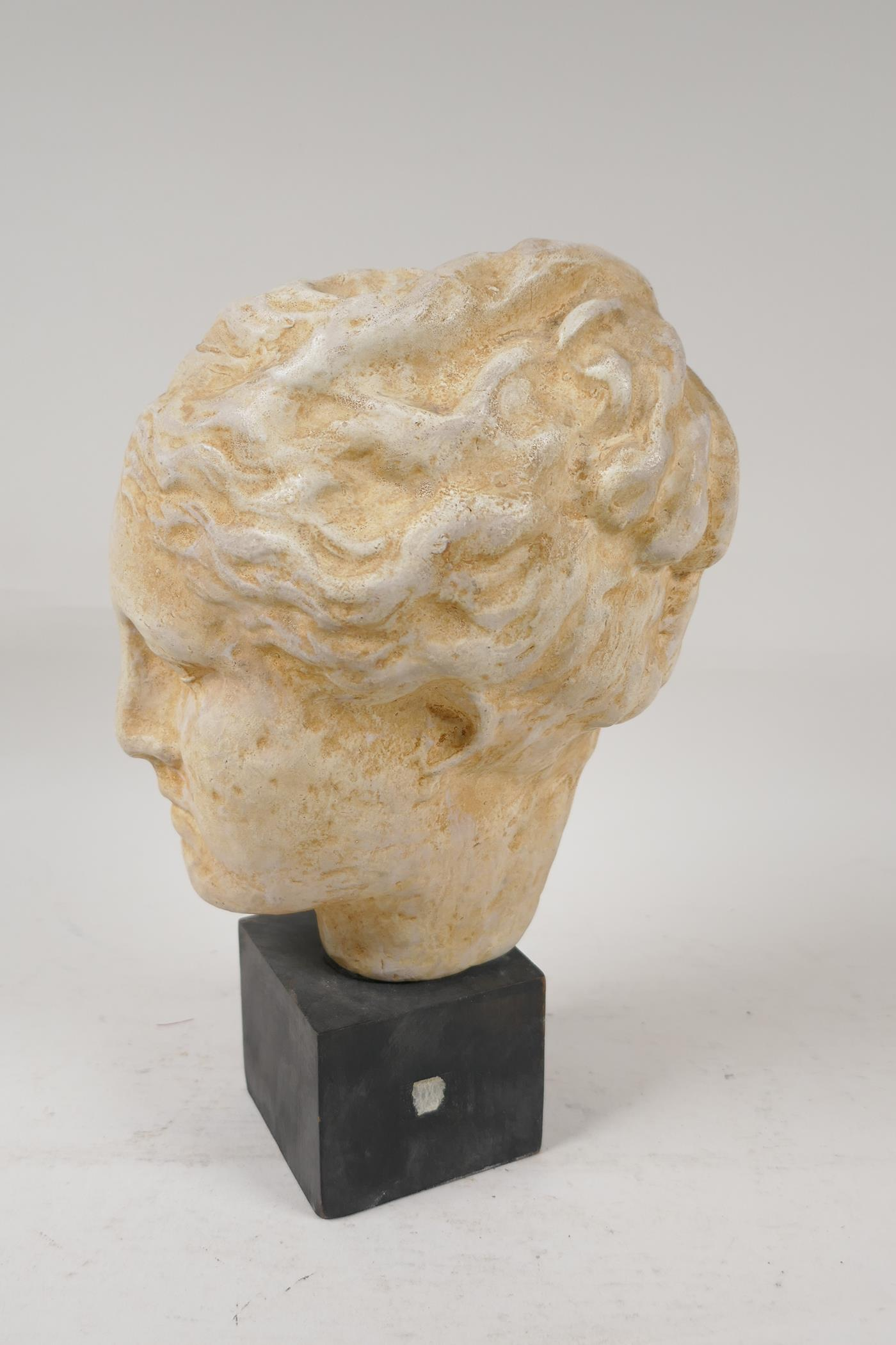 """A Grand Tour style pottery bust after the classic, with certifying seal attached, 10"""" high - Image 3 of 4"""