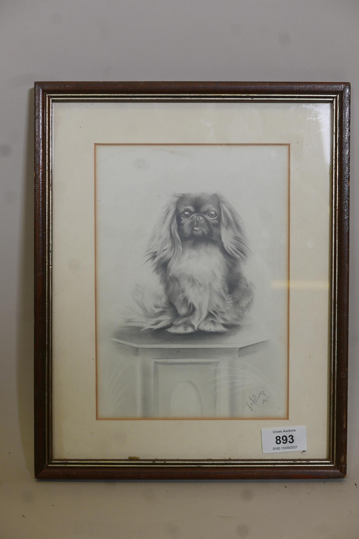 """H.W. Hellings, portrait of a Pekinese dog, signed and dated 1917, pencil drawing, 9"""" x 6"""" - Image 3 of 4"""