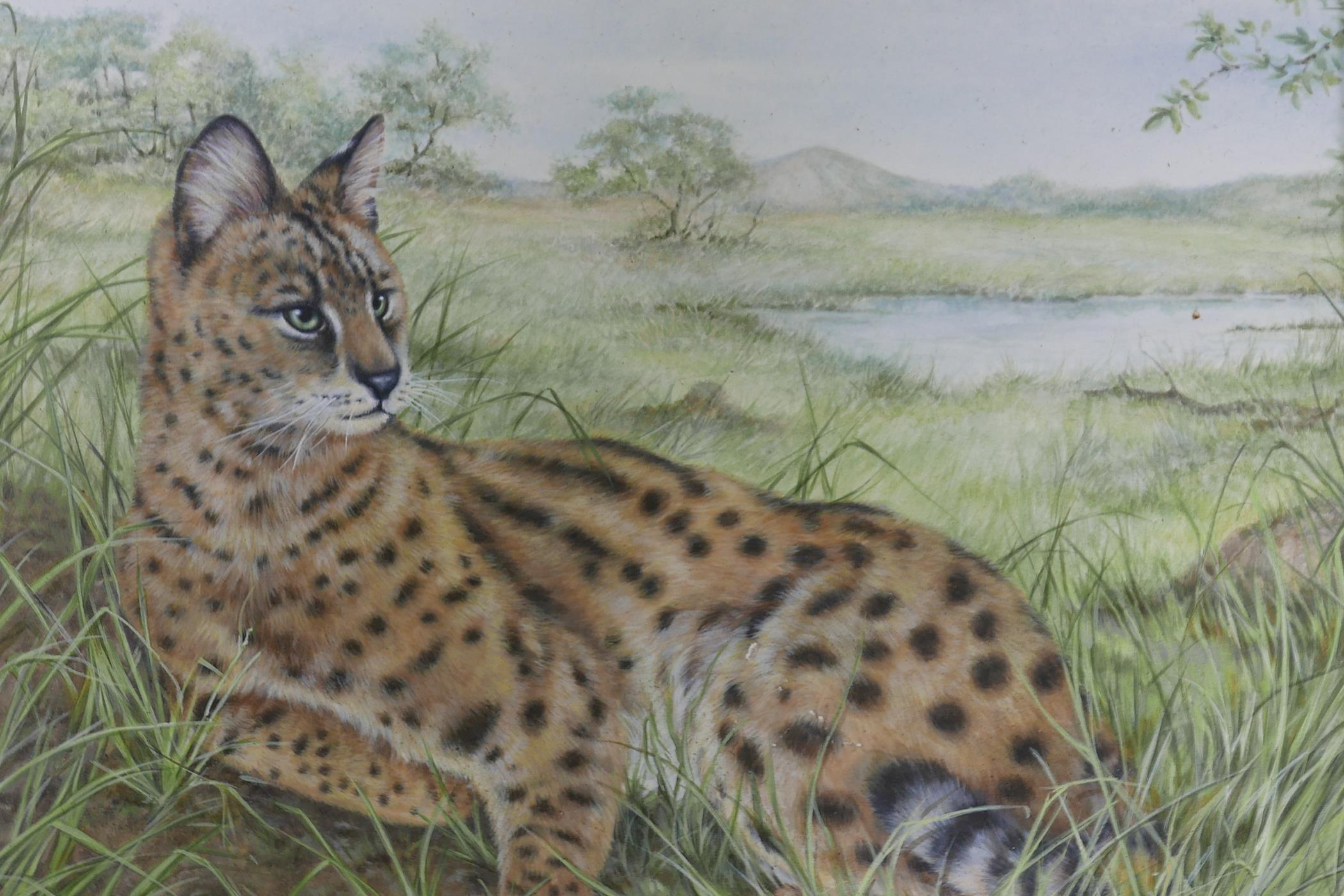 """Savannah cat in an African landscape, signed with a monogram MCE, watercolour, A/F, 12"""" x 11"""""""