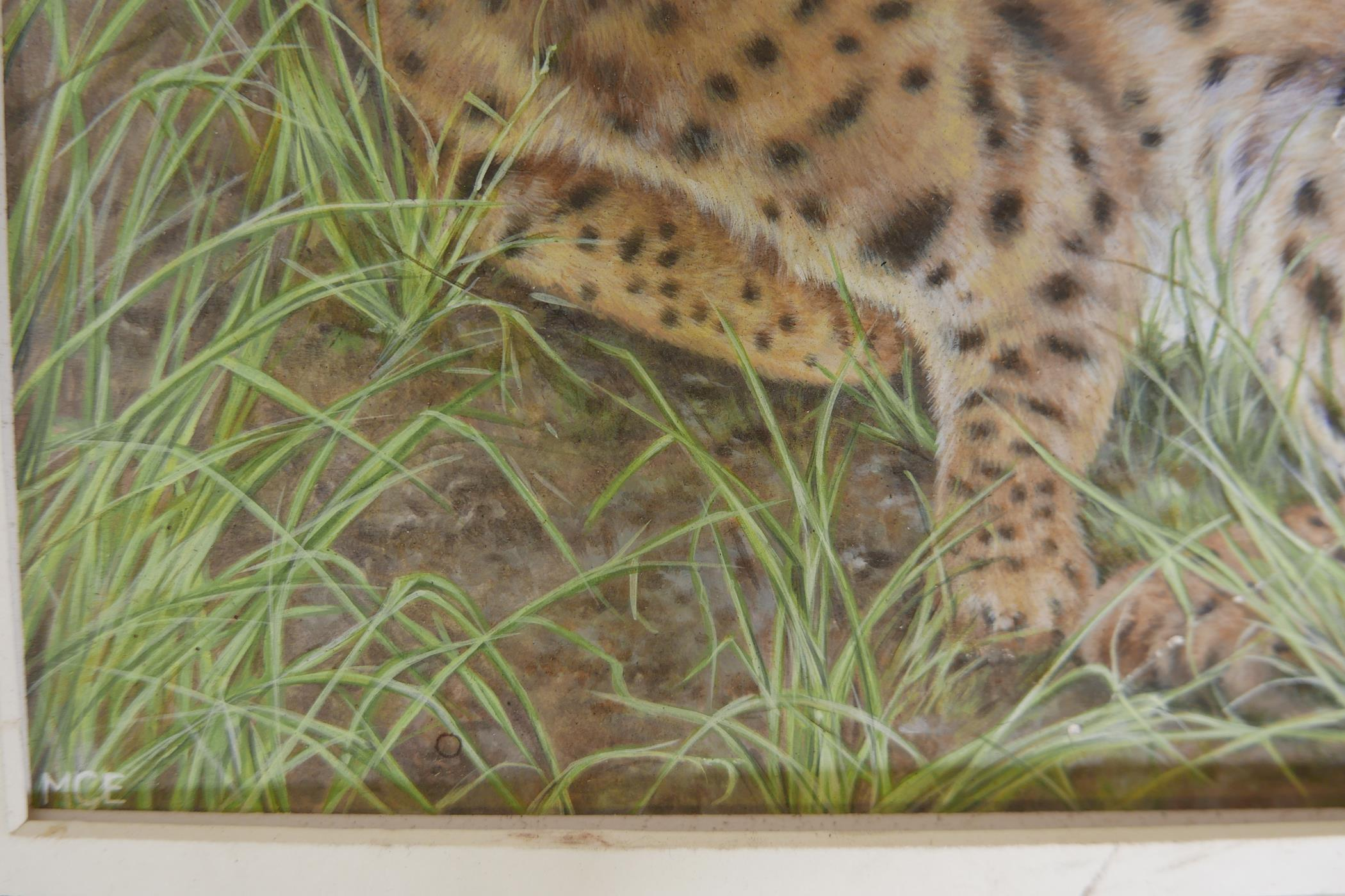 """Savannah cat in an African landscape, signed with a monogram MCE, watercolour, A/F, 12"""" x 11"""" - Image 3 of 4"""