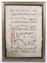 An 18th century velum page of antiphonal choral script
