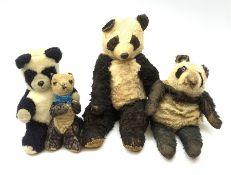 Four English panda bears including 1930s night-dress case