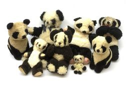 Seven English panda bears 1950s-60s including Farnell with fixed head and limbs