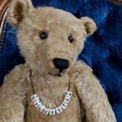 The Teddy Bear Auction