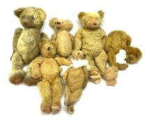 Six early wood wool filled teddy bears for restoration.