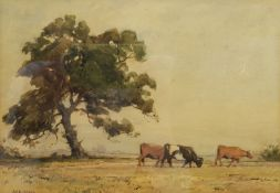 Alfred Wildsmith (British 1876-1936): Cattle Grazing