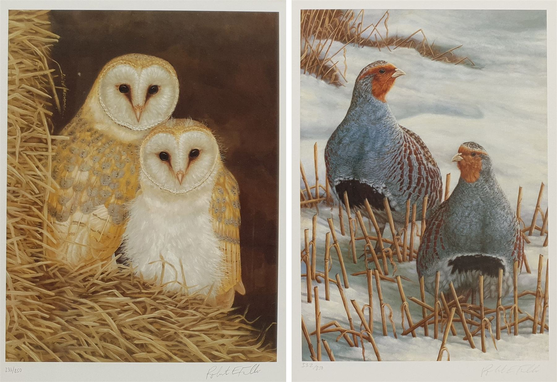 Robert E Fuller (British 1972-): 'Owls Snuggled Up' and 'Greys on Winter Stubble'