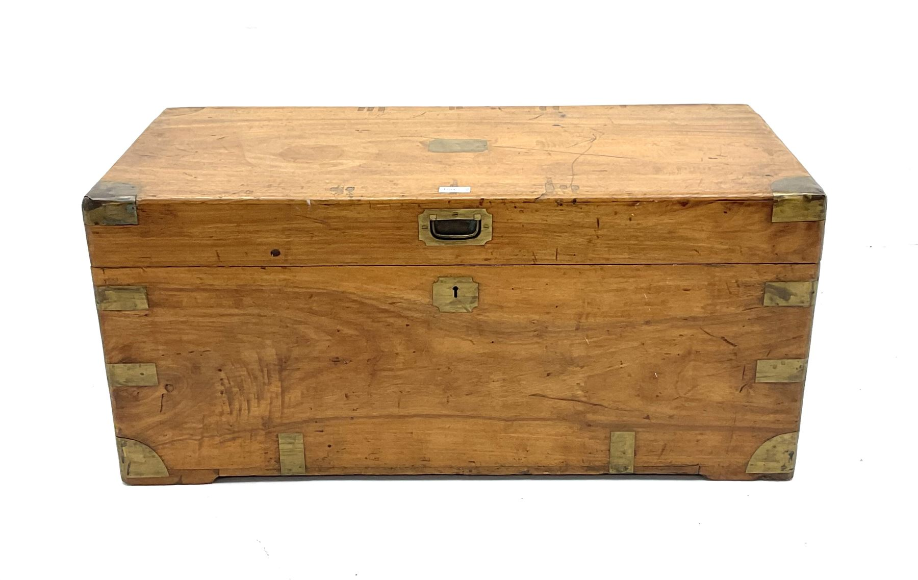 Early 20th century brass bound camphor wood campaign style chest