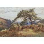 Frank Walton (British 1840-1928): 'On Holmbury Hill St. Mary Dorking'