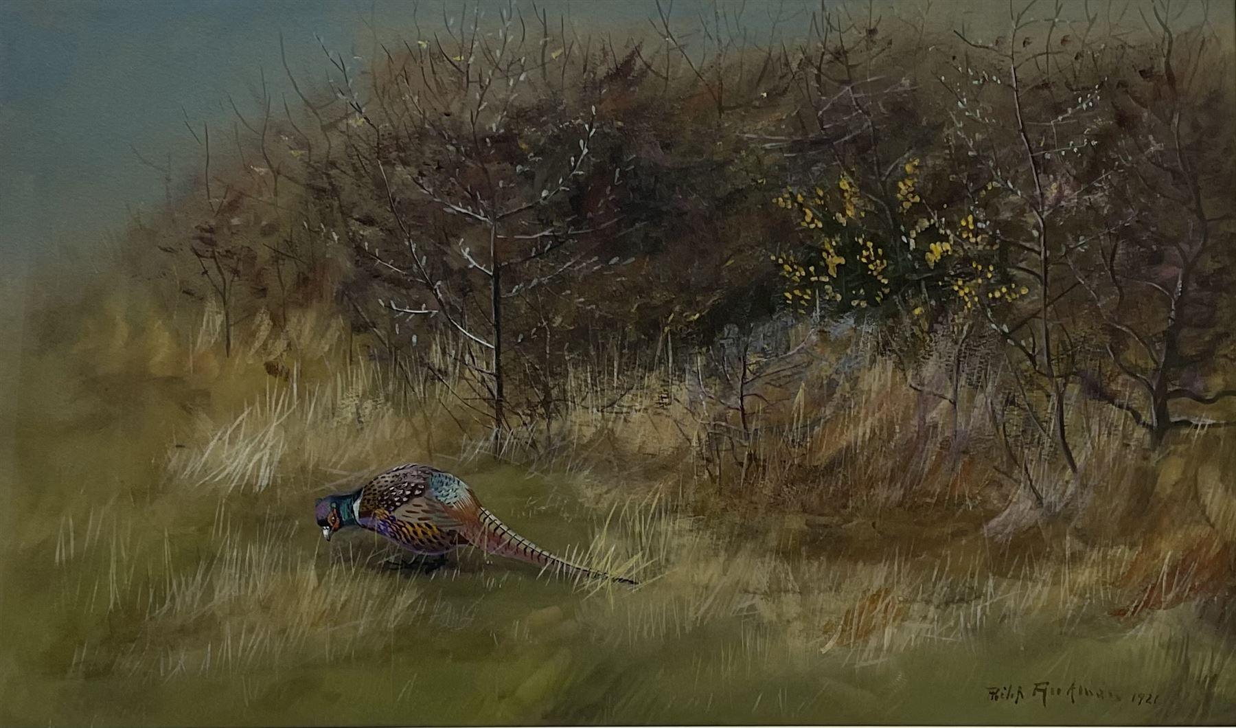 Philip Rickman (British 1891-1982): Pheasant emerging from the Undergrowth