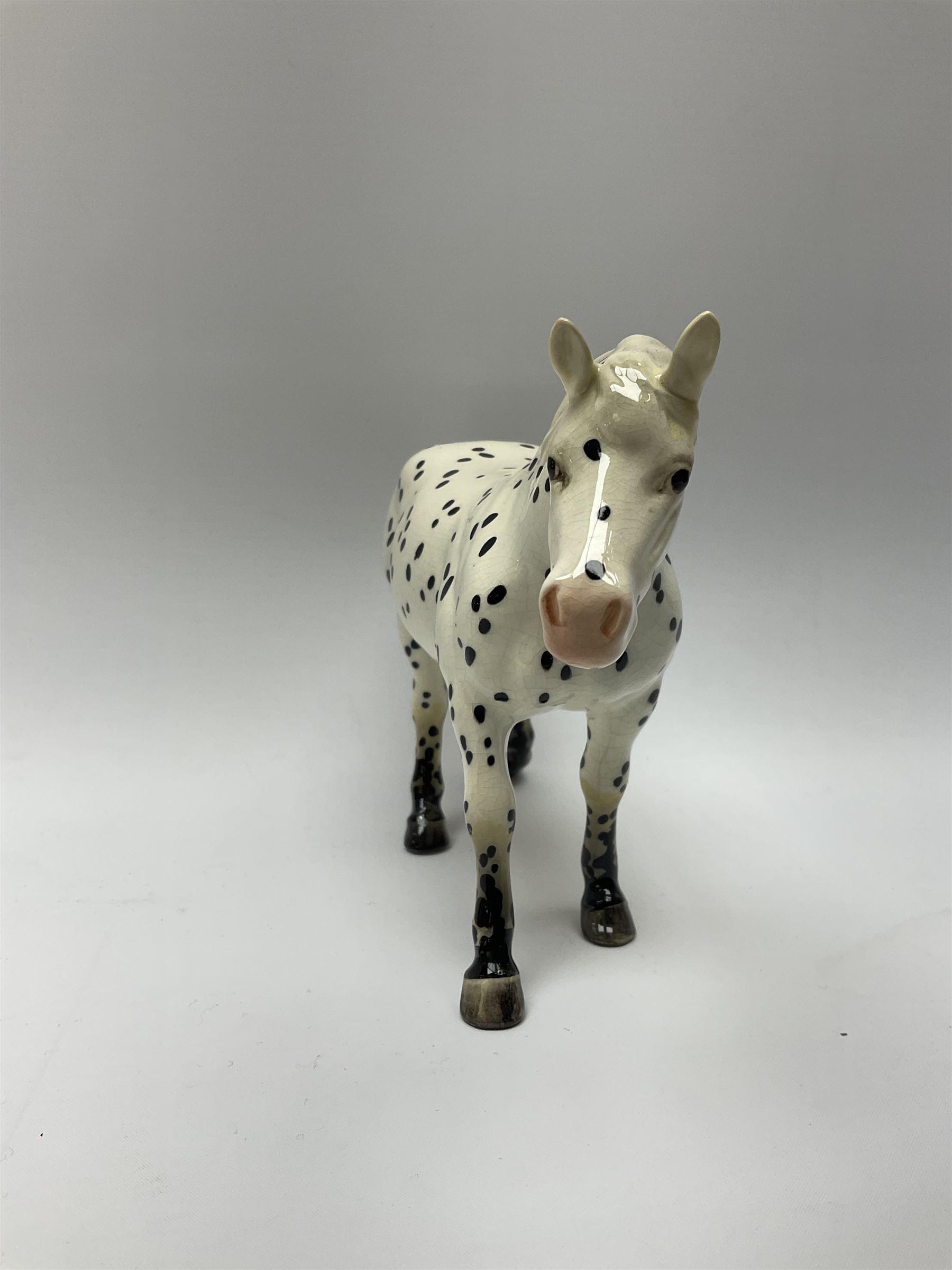 A Beswick model of an Appaloosa horse - Image 5 of 7