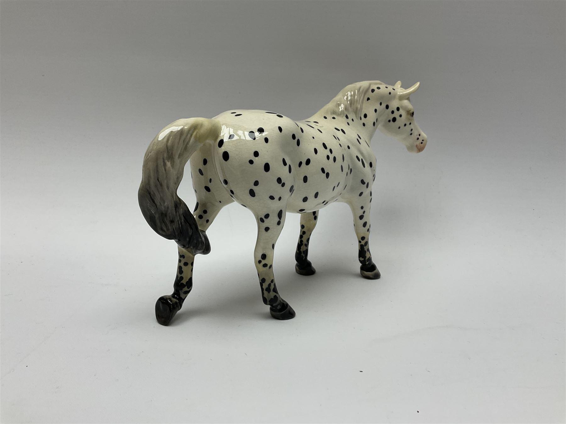 A Beswick model of an Appaloosa horse - Image 4 of 7