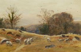 John Henry Cole (British c.1828-1895): Sheep Grazing
